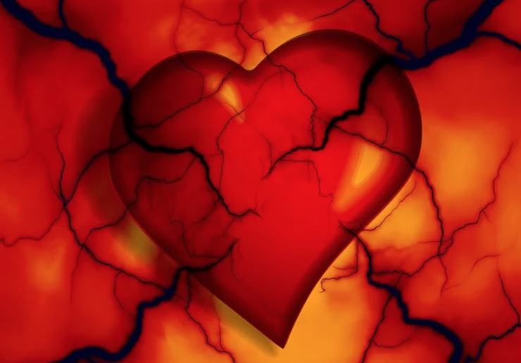 The-Causes-Of-Atherosclerosis
