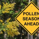 Cross Allergy Signs, Treatment & Tips and Tricks