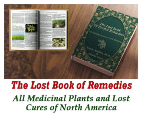 The -Lost-Book-Of-Remedies