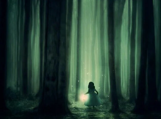 Child-In-Enchanted-Forest